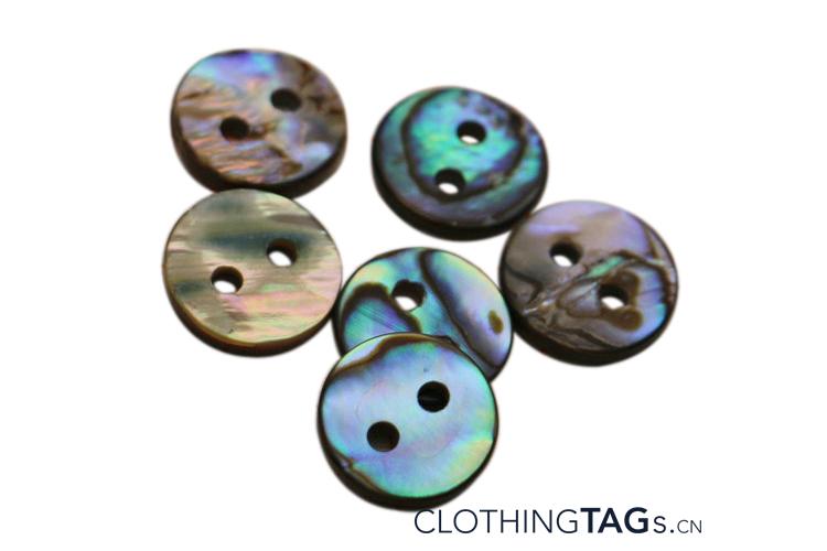 Abalone shell button